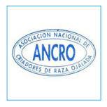 ancro
