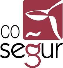 Cosegur